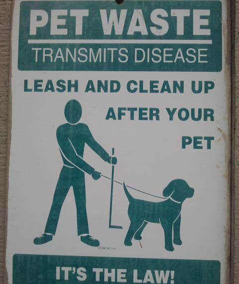 Pick up after your pet