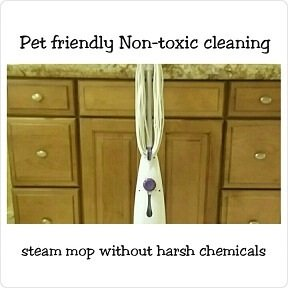 SteamMopWithoutToxicChemicals