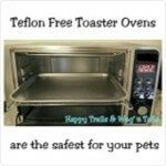 Toaster ovens without teflon non-stick coating are safer for pets