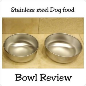Lead free Stainless steel Dog food bowl Review