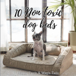 Toxin Free Pet bed: 10 Chemical free Dog beds and Cat bed