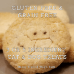 Homemade GF pumpkin cat treat and Vegan dog treat