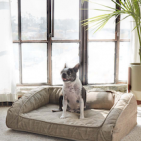 Toxin Free Pet Beds: Certified chemical free Dog beds and Cat bed